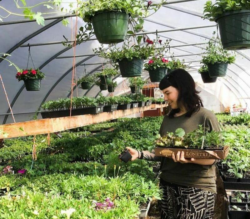 Pandemic Inspires Gardeners